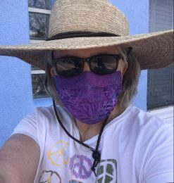 Rep. Pam Powers Hannley in facemask
