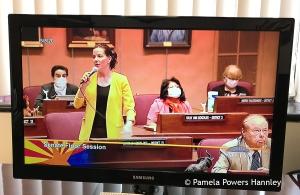 Senator Michelle Ugenti-Rita