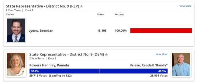 Aug 4 Primary vote, LD9